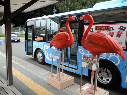 フラミンゴゲート@日本平動物園