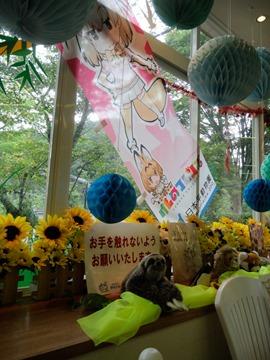 レストハウス窓に貼ってあるフェネックのぼり@日本平動物園