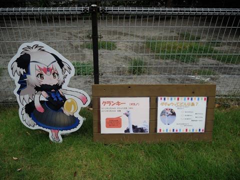 ダチョウのフレンズパネルとダチョウのクランキーさん説明看板@日本平動物園